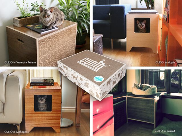 Curio Cat collection