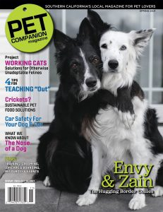 Spring Cover of Pet Companion Magazine highlighting dogs Envy and Zain