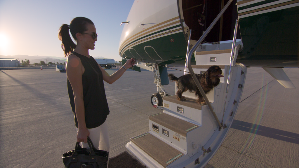 Photograph of woman boarding plane with dog